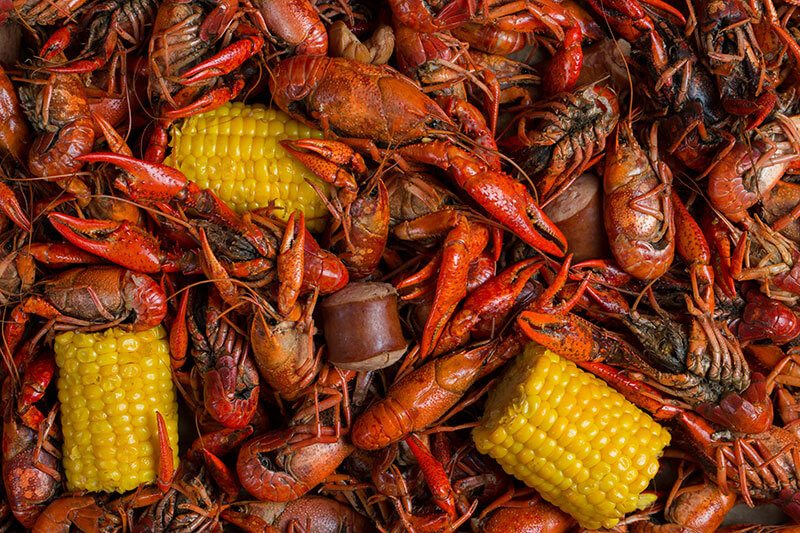 best crawfish in new orleans