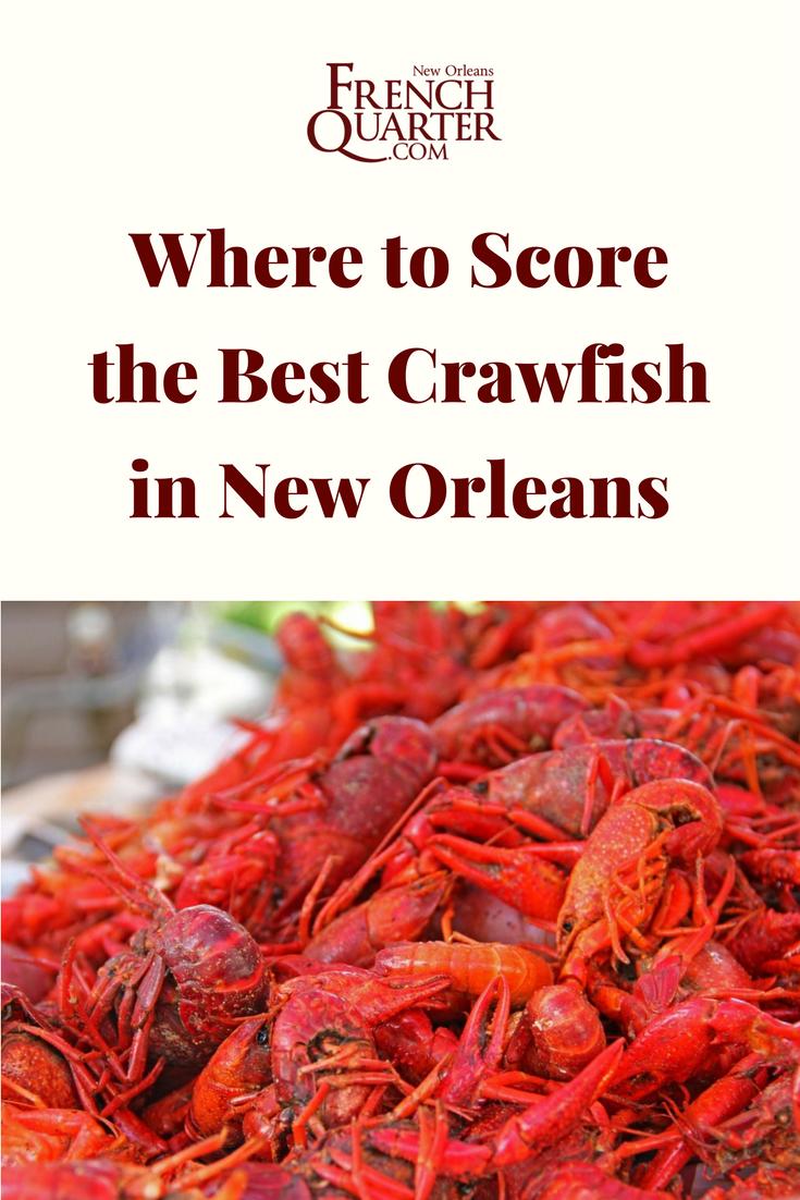 Good Cheap Restaurants New Orleans