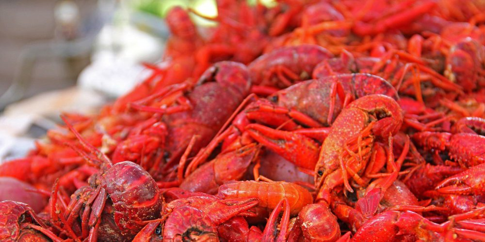 Where to Score the Best Crawfish in New Orleans