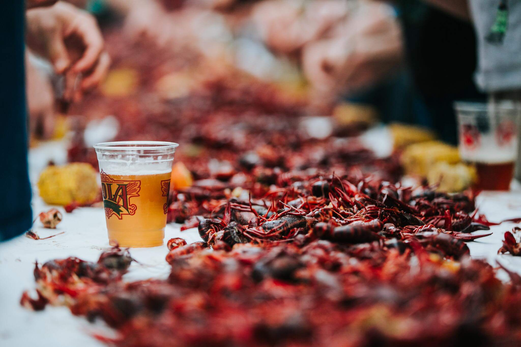 Nola Crawfish Fest